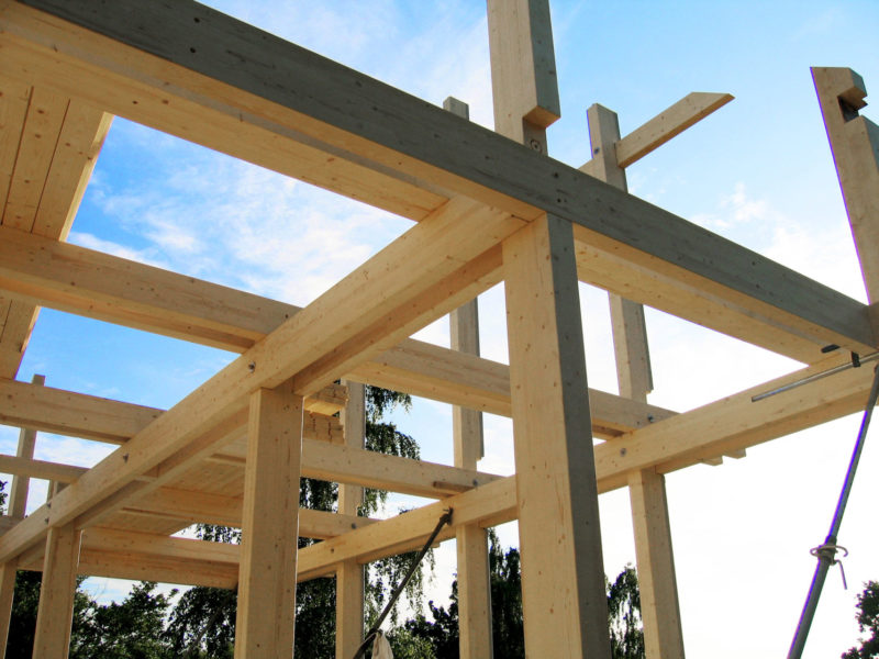 Concentus Holz Skelett Haus Neuenhagen